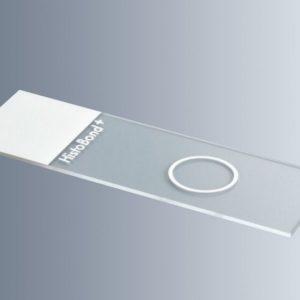 Objektilasi HistoBond+, 1 kuoppa Ø 12 mm, valkoinen kirjoitusalue